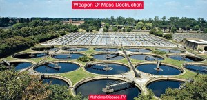 sewage treatment plant and prion disease